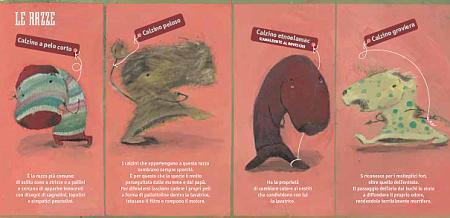 manuale-dei-calzini-selvaggi @ foto Centostorie