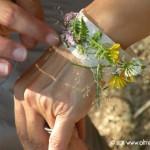 Braccialetto con i fiori del bosco e lo scotch di crata di mamma Paola