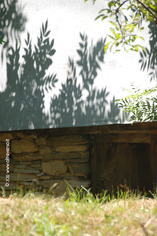 baita con riflesso delle foglie sul vecchio tetto di lamiera