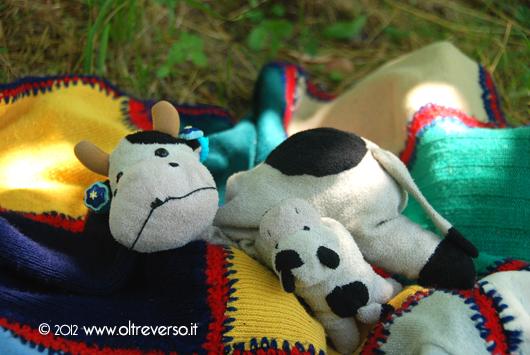 mucca al picnic