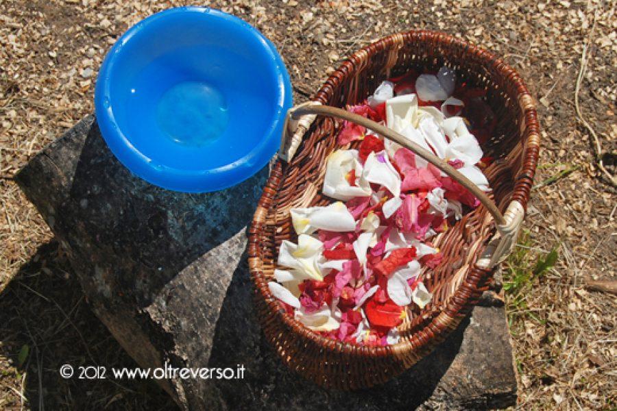 Acqua di rose: giocare a fare i profumi