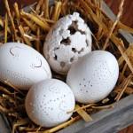 uova_dremel_pasqua_easter_eggs_augurioltreverso