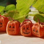 halloween_pumpink_zucche_lavoretti_ideecreative_Physalis_alkekengi