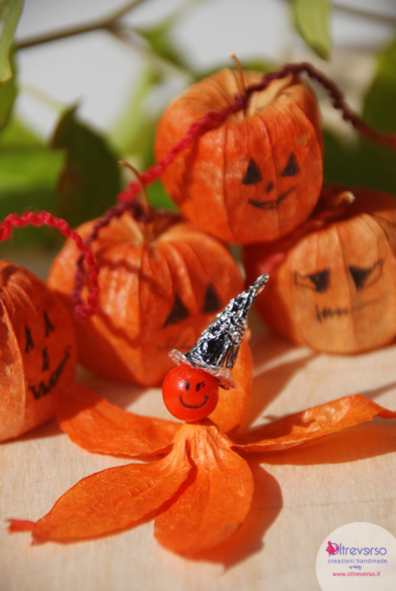 halloween_witch_lavoretti_ideecreative_Physalis_alkekengi