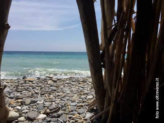 capanna con le canne di bambù e i leggenti trovati sulla spiaggia