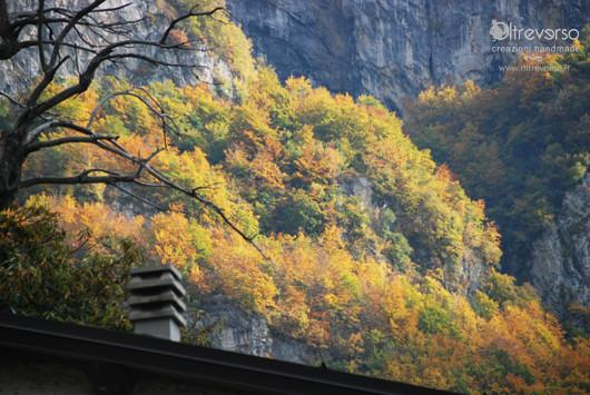 autunno in montagna con i bambini  raccogliere castagne caldarroste