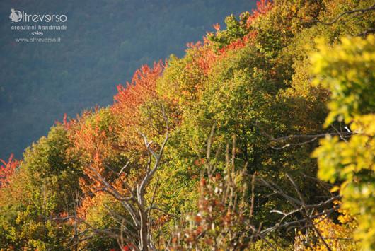 autunno in montagna con i bambini