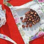 Il grembiule per raccogliere le castagne con i bambini