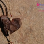 heart driftwood nacklace