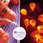decorazioni-luci-halloween-zucche-tutorial-alchechengi-pumpkin-diy-fbk